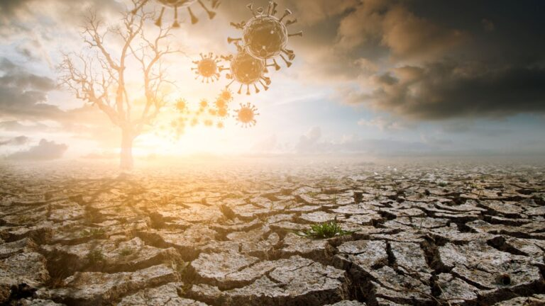 What can the theory and philosophy of climate change teach us about COVID-19?